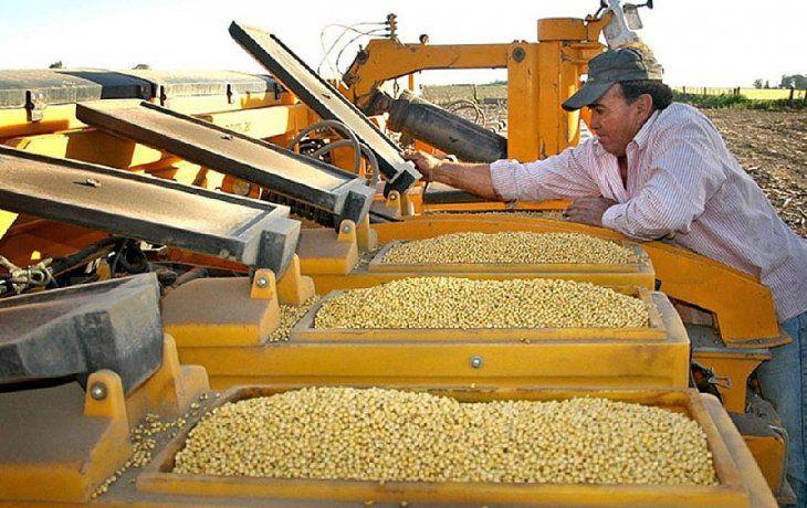 Expertos anticipan qué pasará con el precio de la soja